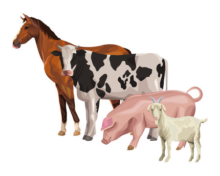 horse cow pig and goat icon cartoon vector illustration graphic design