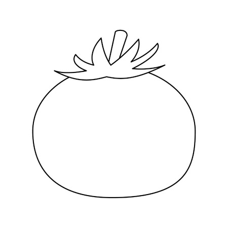 Tomato fresh vegetable food vector illustration graphic design Illustration