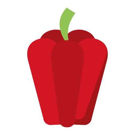 Pepper fresh vegetable isolated vector illustration graphic design