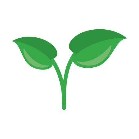 Plant leaves cartoon isolated vector illustration graphic design Reklamní fotografie - 122681559