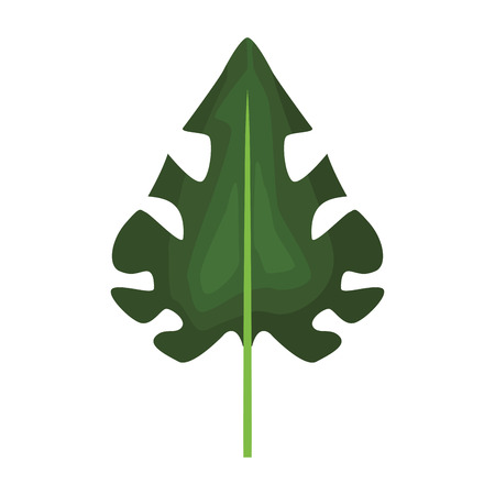 Leaf nature cartoon vector illustration graphic design