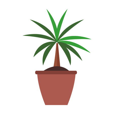 plant nature indoor vector icon illustration graphic design Reklamní fotografie - 122549589