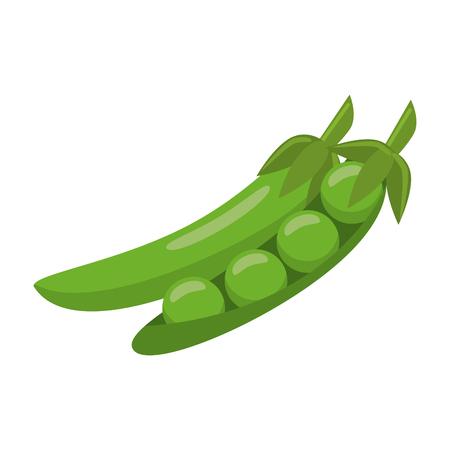 fresh vegetables peas cartoon vector illustration graphic design
