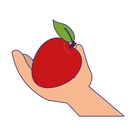 hand holding tomato isolated vector illustration graphic design