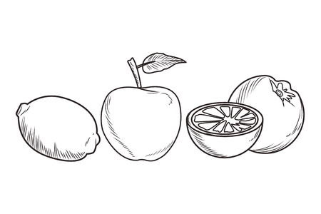 Fresh fruit nutrition healthy grouped collection with lemon apple and orange food and fitness diet options black and white vector illustration graphic design Banco de Imagens - 122313339