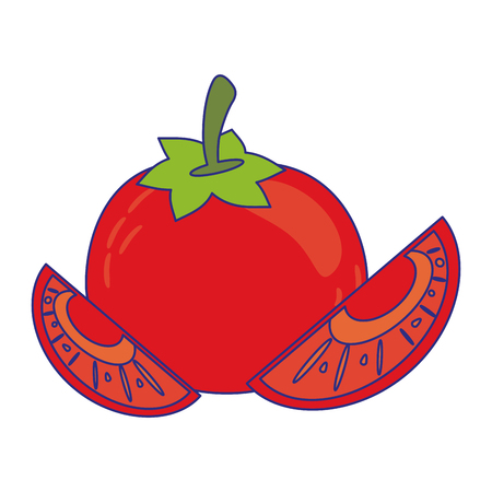 Tomatos cut slices cartoon vector illustration graphic design Illusztráció