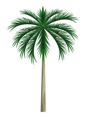palm icon cartoon vector illustration graphic design Stock Illustratie