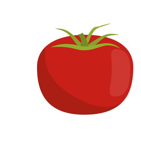 Tomato vegetable fresh food isolated vector illustration graphic design