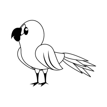 Parrot exotic bird animal cartoon isolated vector illustration graphic design