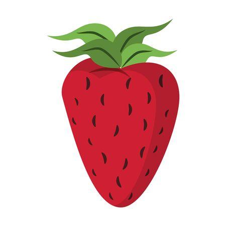 Strawberry fresh fruit isolated cartoon vector illustration graphic design