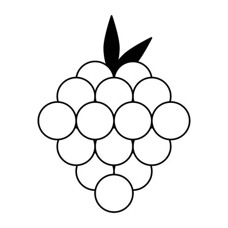Raspberries fruits cartoon isolated food vector illustration graphic design