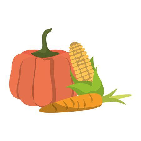 Vegetables fresh pumpkin corn and carrot food cartoon vector illustration graphic design