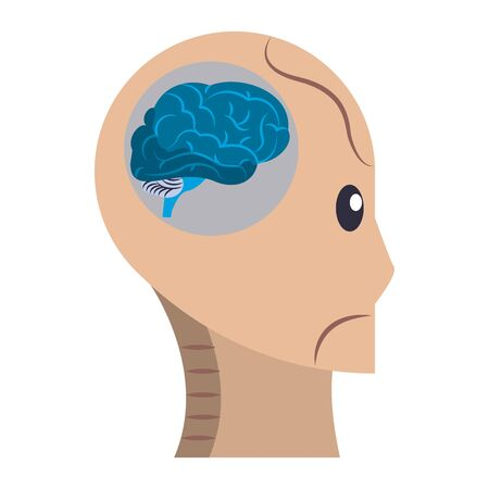 brain top view icon cartoon isolated vector illustration graphic design