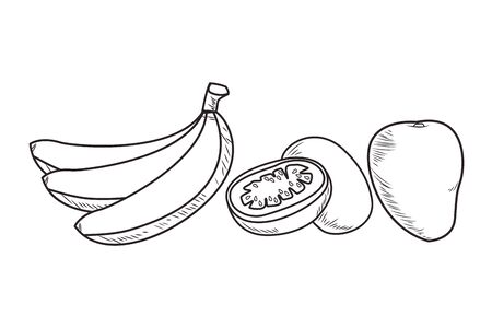 Fresh fruit nutrition healthy grouped collection with bananas kiwi and mango food and fitness diet options black and white vector illustration graphic design
