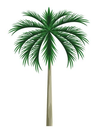 palm icon cartoon vector illustration graphic design Illustration
