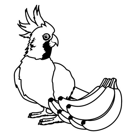 parrot wild cockatoo with banana icon cartoon in black and white vector illustration graphic design