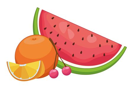Fresh and delicious tropical watermelon orange and cherries fruits vector illustration graphic design