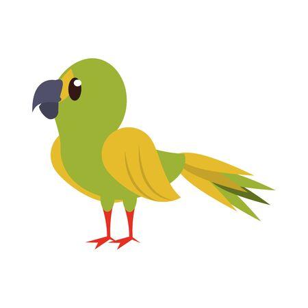 Parrot exotic bird animal cartoon isolated vector illustration graphic design