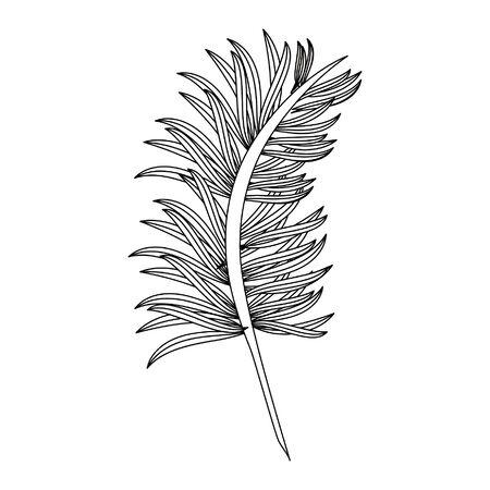 Leaves nature cartoon isolated symbol vector illustration graphic design Stock Illustratie