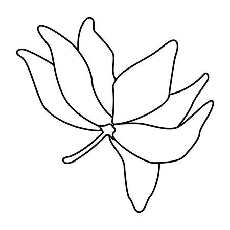 lotus blossom flowers nelumbo nucifera gaertn icon cartoon in black and white vector illustration graphic design Standard-Bild - 129062334