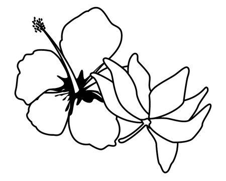 lotus blossom flowers nelumbo nucifera gaertn icon cartoon in black and white vector illustration graphic design Standard-Bild - 129113737
