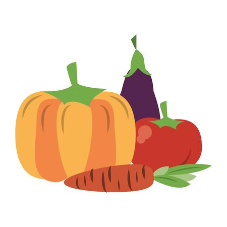 Fresh vegetables healthy food pumpkin eggplant tomato and carrot vector illustration graphic design Stock Illustratie