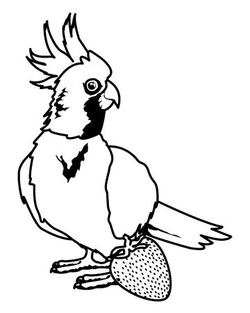 parrot wild cockatoo with strawberry icon cartoon in black and white vector illustration graphic design