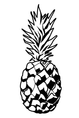 Pineapple fresh natural fruit cartoon vector illustration graphic design