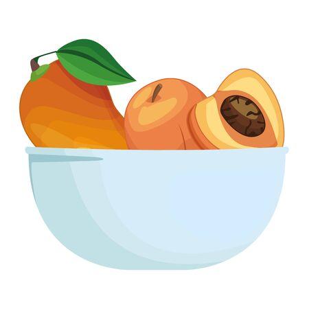 Fresh peaches fruits in bowl cartoon vector illustration graphic design