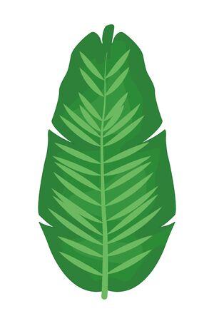 Tropical palm leaf nature cartoon vector illustration graphic design Standard-Bild - 129219321
