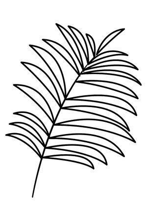 Tropical palm leaf nature cartoon vector illustration graphic design
