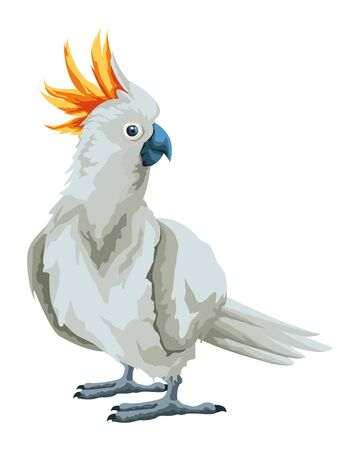 parrot wild cockatoo icon cartoon isolated vector illustration graphic design