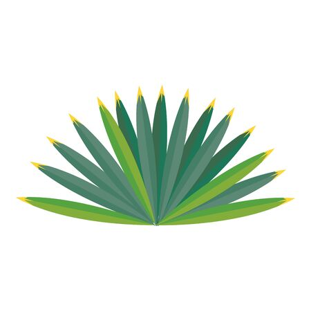 Tropical leaves nature cartoon isolated vector illustration graphic design Çizim