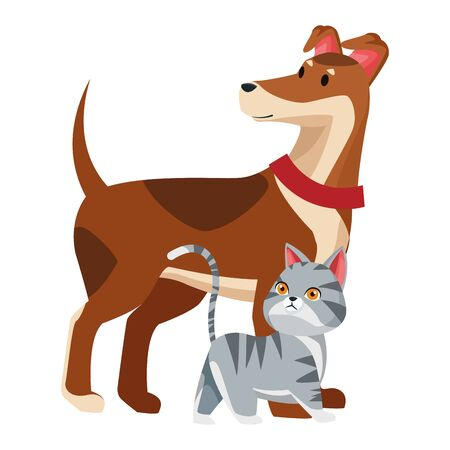 domestic animals and pet with dog and cat icon cartoon vector illustration graphic design