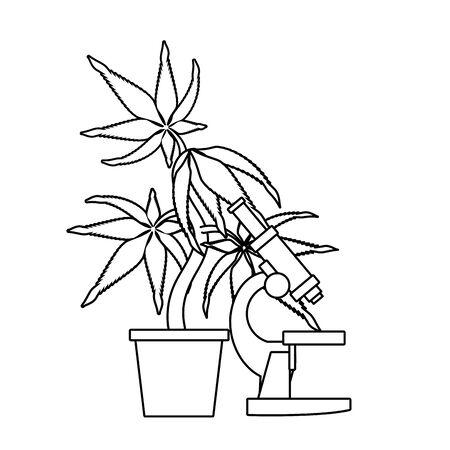 cannabis marijuana medical marijuana sativa hemp medicine plant with microscope cartoon vector illustration graphic design