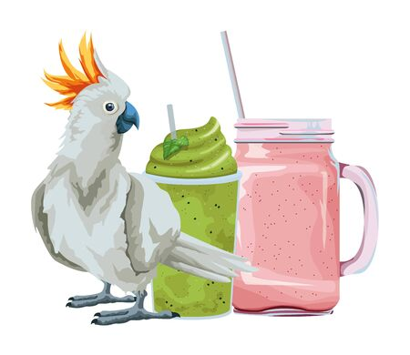 summer beach and vacation with cockatoo and smoothie drink icon cartoon vector illustration graphic design