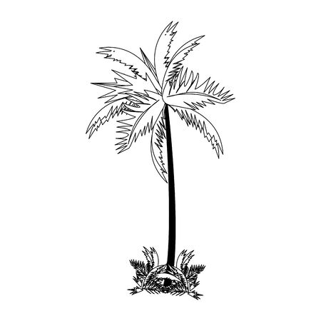 tropical summer relax holiday outdoor palm isolated cartoon vector illustration graphic design