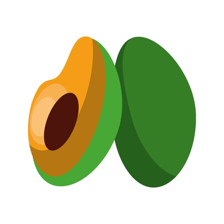 Fresh avocado half cut vegetable isolated vector illustration graphic design