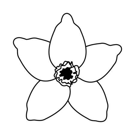 exotic tropical flower icon cartoon in black and white vector illustration graphic design Illusztráció