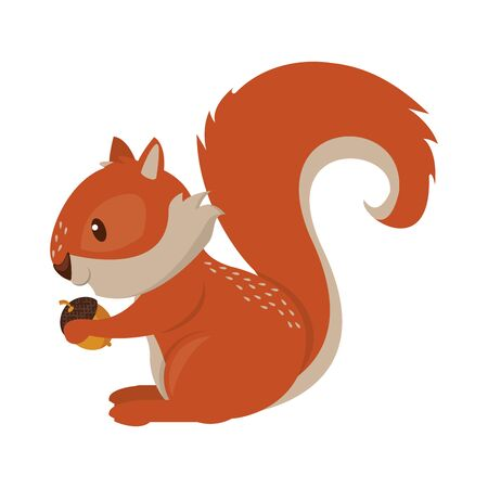 Squirrel eating nut cartoon animal vector illustration graphic design