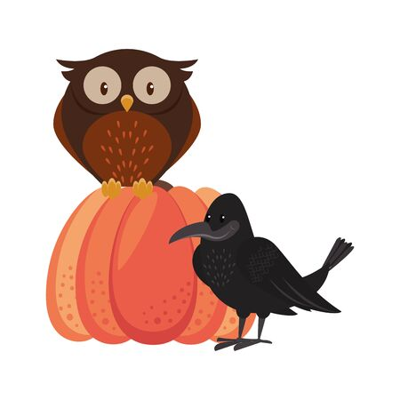 Wild animals and autumn season cartoons owl and crow on pumpkin vector illustration graphic design