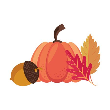 Autumn season cute pumpkin and nut with leaves cartoons vector illustration graphic design