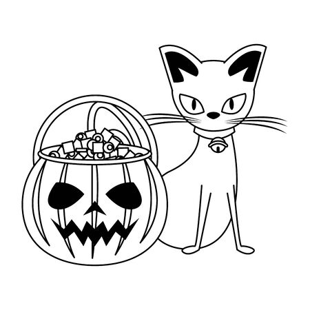 halloween october scary celebration, witch cat with pumpkin candys pot cartoon vector illustration graphic design