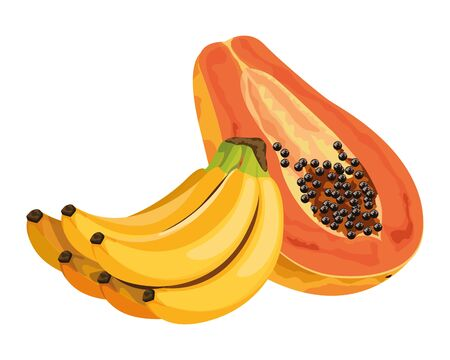exotic tropical fruit with banana cluster and papaya icon cartoon vector illustration graphic design Illustration