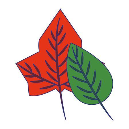 Autumn leaves nature cartoon isolated symbol vector illustration graphic design Illustration