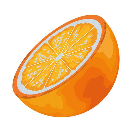 Tropical delicious fruit with orange icon cartoon vector illustration graphic design