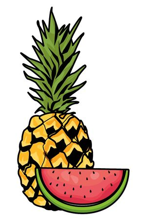 Fresh and delicious tropical pineapple and watermelon fruits vector illustration graphic design