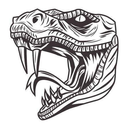 snake head drawn in black and white icon vector illustration graphic design Stock Illustratie