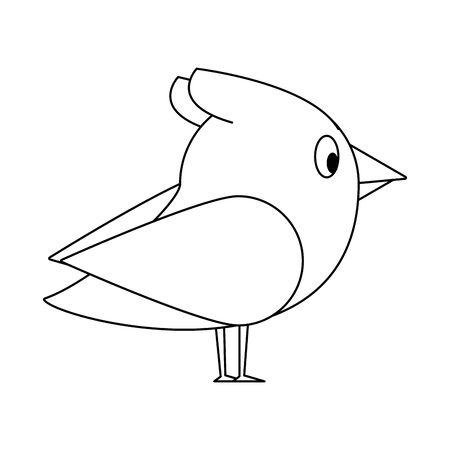 cute animal bird natural fauna cartoon vector illustration graphic design