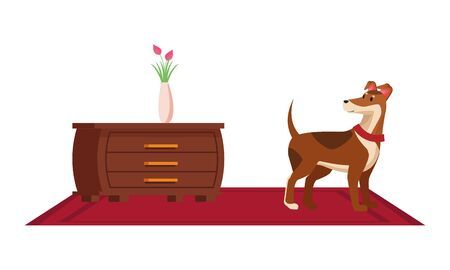 furniture house interior with chest of drawers and floor lamp over carpet icon cartoon vector illustration graphic design Illustration
